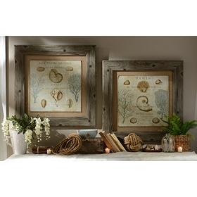 La Mer Framed Art Prints
