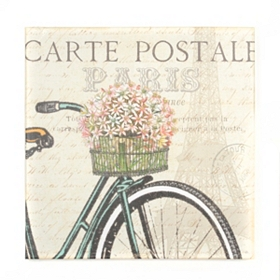 Vintage Bicycle I Canvas Art Print