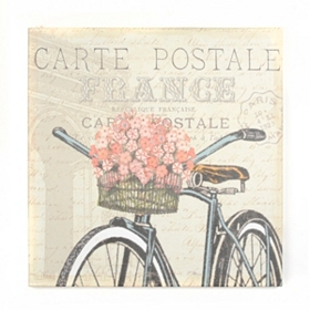 Vintage Bicycle II Canvas Art Print