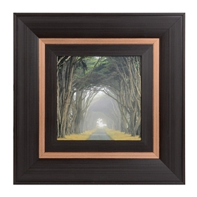 Corridor Of Cypress I Framed Art Print