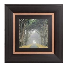 Corridor Of Cypress I Framed Art Print