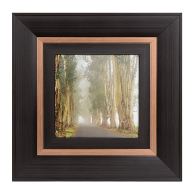 Corridor Of Cypress II Framed Art Print