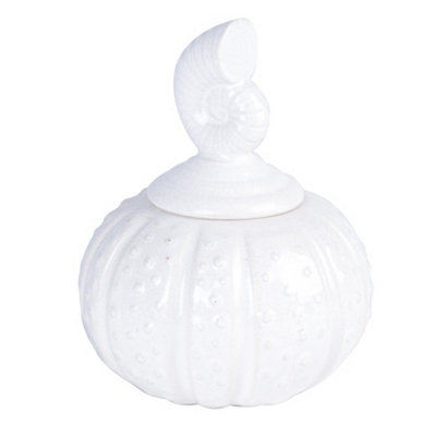 White Sea Shell Jar