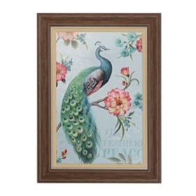 Feathered Peacock Framed Art Print