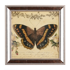 Botanical Butterfly Framed Art Print