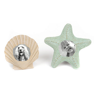 Shell & Starfish Picture Frames, 4x4