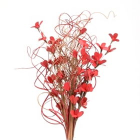 Red Palm Lily Bouquet
