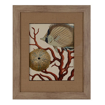 Red Coral II Framed Art Print
