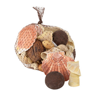 Beach Walk Scented Seashell Filler