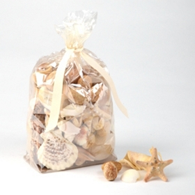 Beach Walk Scented Seashell Potpourri