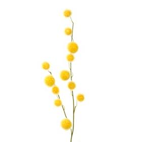 Yellow Pom Pom Spray