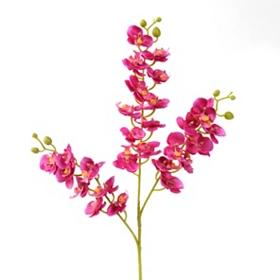 Fuschia Orchid Stem, 24 in.