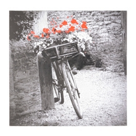 Vintage Bicycle Canvas Art Print