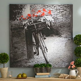 Vintage Bicycle Canvas Art Print