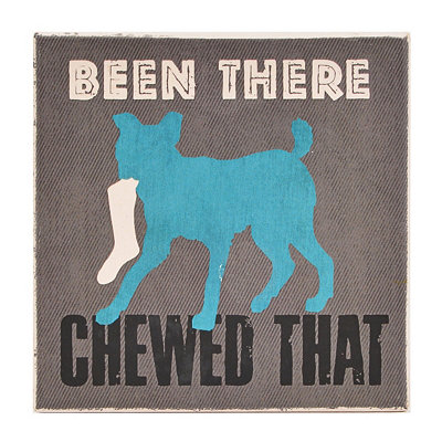 Been There Chewed That Dog Coaster