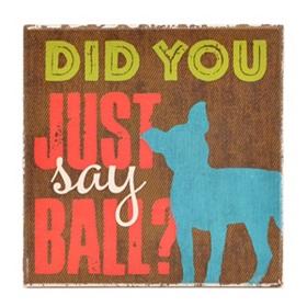 Did You Say Ball Dog Coaster