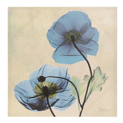 Turquoise X-ray Floral II Canvas Art Print