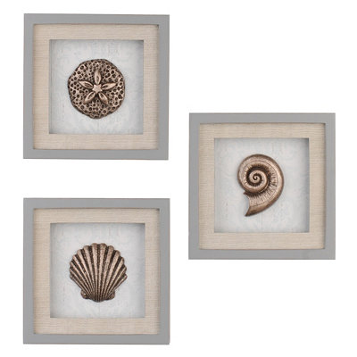 Seashell Shadowboxes, Set of 3