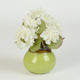 White Hydrangea Arrangement in Green Pot