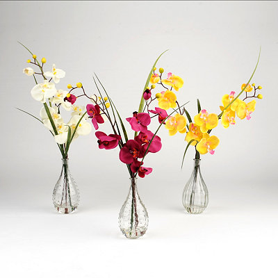 Orchid & Grass Arrangements