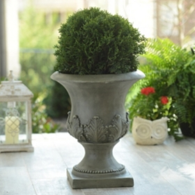 Grecian Leaf Concrete Planter