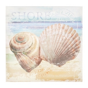 Seashell Postcard II Canvas Art Print