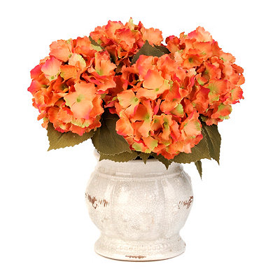 Orange Hydrangea Arrangement in Ivory Pot