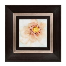 White Flower II Framed Art Print