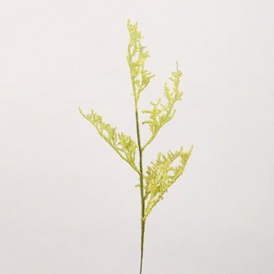 Green Astilbe Spray