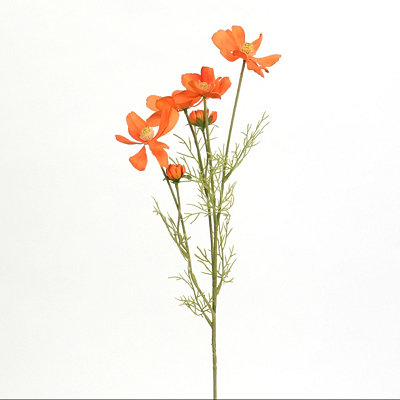 Orange Cosmos Stem
