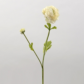 Ivory Ranunculus Stem, 22 in.