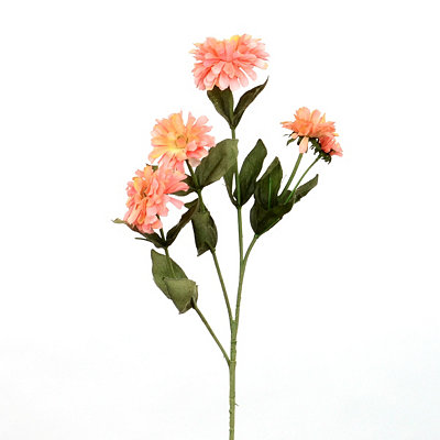 Pink Mini Zinnia Stem