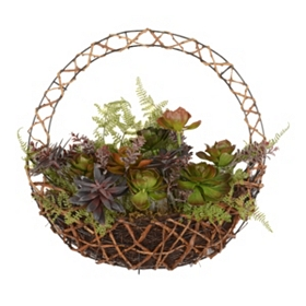 Mixed Succulent Wreath, 16 in.