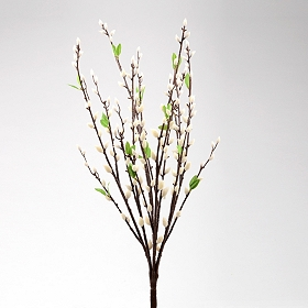 White Willow Branch, 28.5 in.