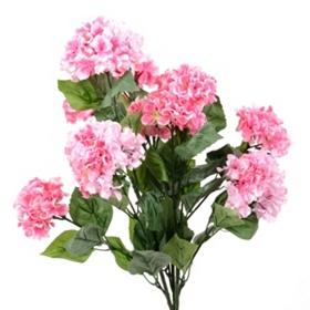 Pink Garden Hydrangea Bush