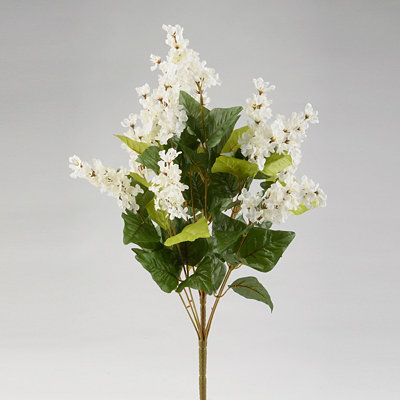 White Lilac Bush, 19 in.