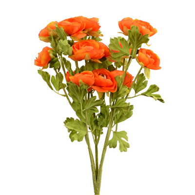 Orange Ranunculus Bush