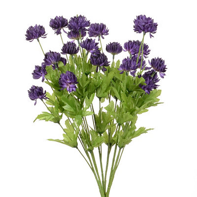 Violet Thistle Mum Bush, 27 in.