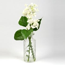 White Lilac Arrangement