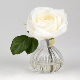 Single White Rose Arrangement