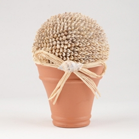 Natural Seashell Topiary