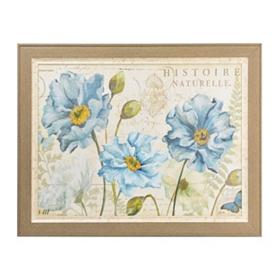 Poppies Naturelle Framed Art Print