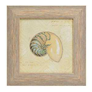 Beach Treasures III Framed Art Print