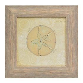 Beach Treasures IV Framed Art Print