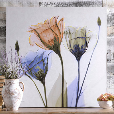 Colorful X-ray Floral Canvas Art Print