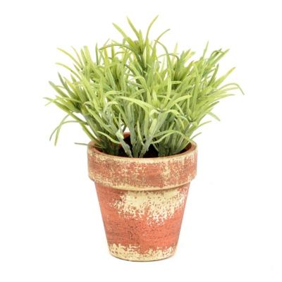 Rosemary Grass Arrangement