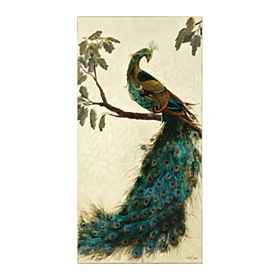 Perching Peacock Canvas Art Print