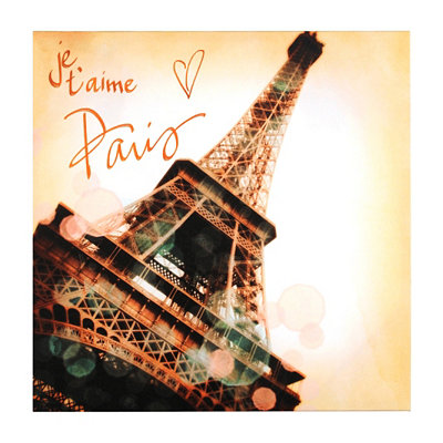 Je T'aime Paris Canvas Art Print