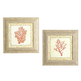 Coral Beauty Framed Art Print, Set of 2