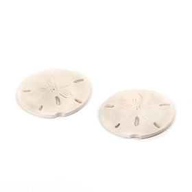 Sand Dollar Car Coasters, Set of 2